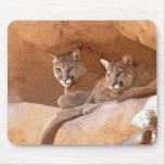 mousepad de dos leones de montaña alfombrilla de ratones