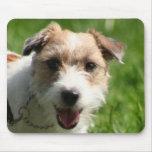 Mousepad de Jack Russell Terrier Alfombrillas De Ratón