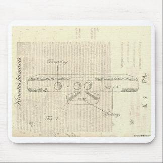 Mousepad de Kinectus Humanis Alfombrilla De Raton