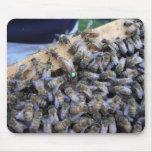 Mousepad de la abeja reina alfombrillas de ratón