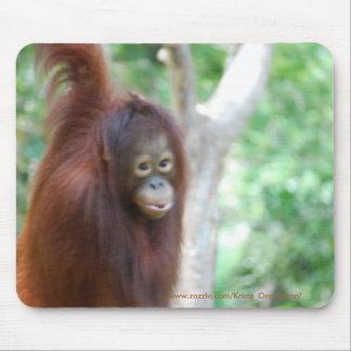 Mousepad de la fan del primate del orangután de Kr Tapetes De Ratón