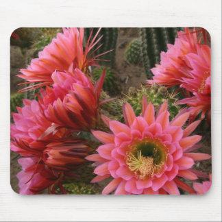 Mousepad de la flor del cactus