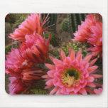 Mousepad de la flor del cactus tapetes de ratones