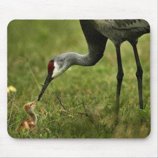 Mousepad de la grúa y del bebé de Sandhill Alfombrillas De Raton