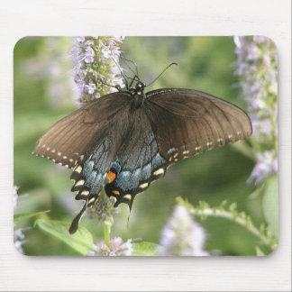 Mousepad de la mariposa de Swallowtail