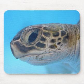 Mousepad de la tortuga de mar verde tapetes de raton