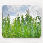 Mousepad del campo de maíz tapete de ratones