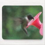 mousepad del colibrí