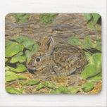Mousepad del conejo alfombrillas de ratones
