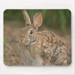 Mousepad del conejo tapete de ratón