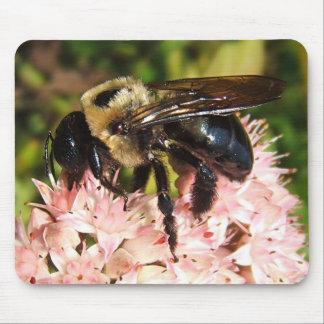 Mousepad del de la abeja de carpintero alfombrilla de ratón