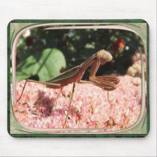 Mousepad del de la mantis religiosa tapetes de ratones