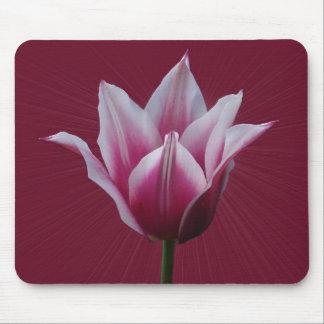 Mousepad del ~ del tulipán w/sunburst