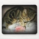Mousepad del gatito del Tabby Tapete De Raton