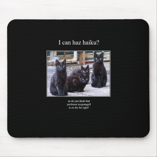 mousepad del gato 8 del haiku