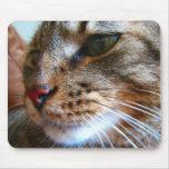 Mousepad del gato de Tabby Alfombrillas De Raton