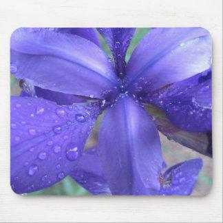 Mousepad del iris