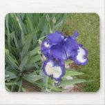Mousepad del iris alfombrillas de ratones