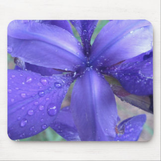 Mousepad del iris alfombrillas de raton
