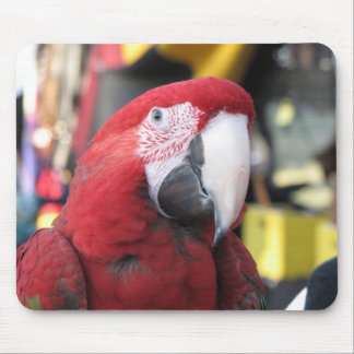 Mousepad del Macaw Alfombrilla De Raton