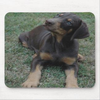 Mousepad del perrito del Doberman