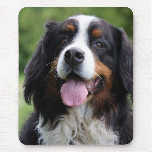Mousepad del perro de montaña de Bernese, idea del