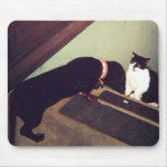 mousepad del perro y del gato tapete de ratones