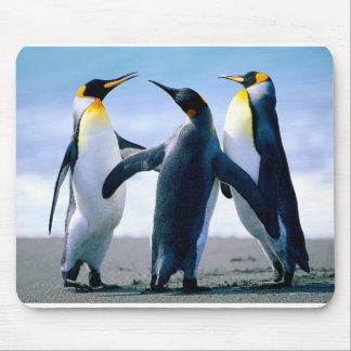 mousepad del pingüino