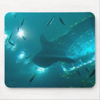 Mousepad del tiburón de ballena alfombrillas de ratones
