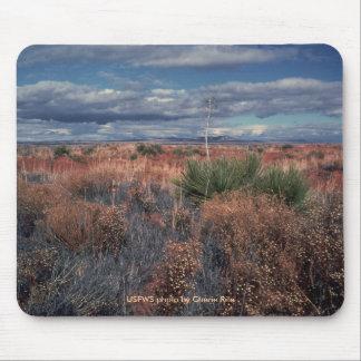 Mousepad / Desert Beauty