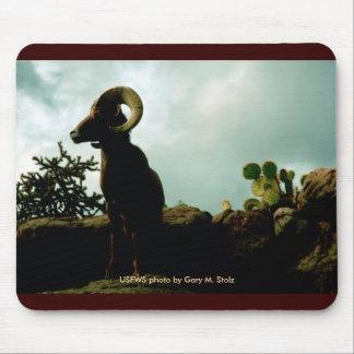 Mousepad / Desert Bighorn Sheep
