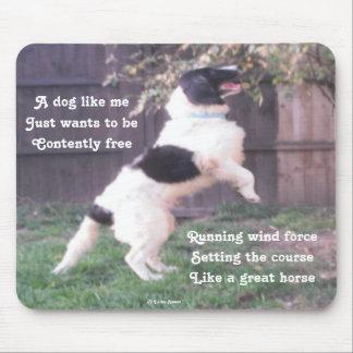 Mousepad Dog Horse Poem By Ladee Basset