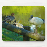 Mousepad Duck And Ibis Mouse Pads