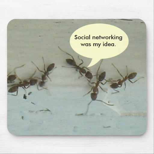 Mousepad - el establecimiento de una red social