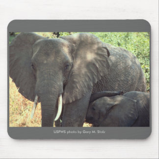 Mousepad / Elephant Mother and Baby