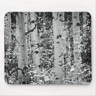 Mousepad Featuring Beautiful Black and White Aspen