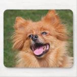 Mousepad feliz del perro de Pomeranian, idea del r Tapetes De Ratón