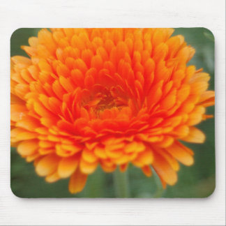 Mousepad floral anaranjado tapete de ratones
