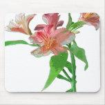 Mousepad floral tapete de raton