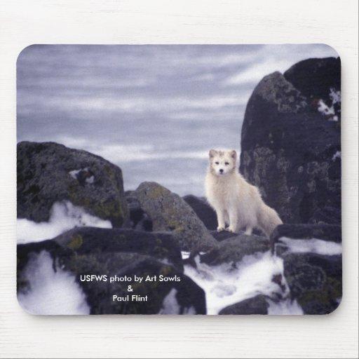Mousepad/Fox ártico Alfombrillas De Raton