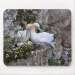 Mousepad: Gannets y flores Alfombrilla De Raton