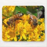 Mousepad gemelo del ~ de las abejas tapetes de ratón
