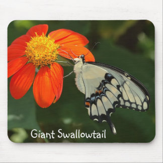 Mousepad gigante de Swallowtail Alfombrilla De Ratones