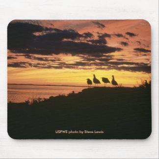 Mousepad / Gulls At Sunset