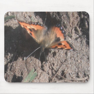 Mousepad Hairy Butterfly Dirt Foraging