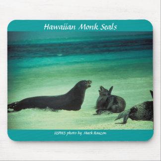 Mousepad / Hawaiian Monk Seals