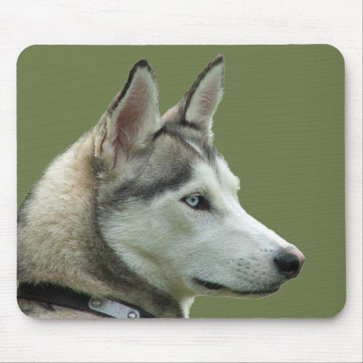 Mousepad hermoso de la foto del perro siberiano fo tapete de ratones
