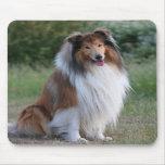 Mousepad hermoso del retrato del perro del collie, alfombrilla de ratones