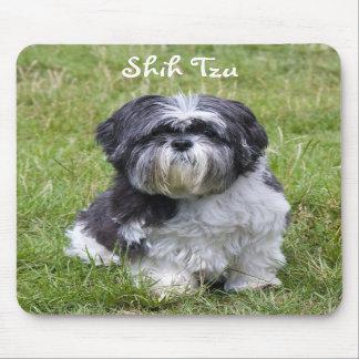 Mousepad hermoso lindo de la foto del perro de Shi Tapetes De Ratón