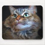 mousepad libby del gato alfombrillas de ratones